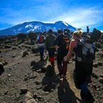 Kilimanjaro Lemosho route200
