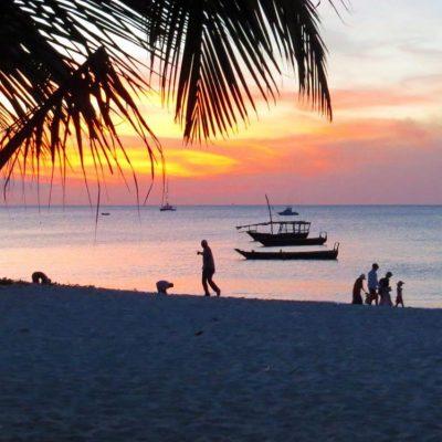 beaches_line-1-1024x749