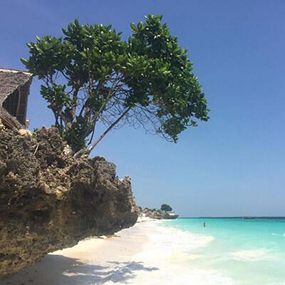 Zanzibar-kilimanjaro-climbing-company