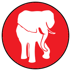 Day 1 -Safari